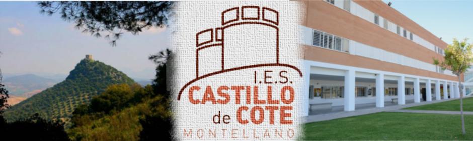 I.E.S. Castillo de Cote